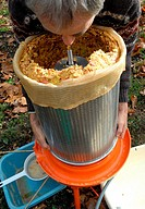 Juice extractor for making natural and organic apple juice - Step 4: extraction of dry fruit and cleaning of extractor