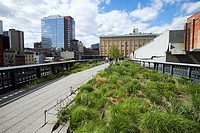 walking the high line park through New York City USA.