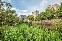 Hibiya Park (Hibiyakoen) in Chiyoda-ku, Tokyo, Japan.