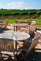 Patio on the Vineyard.