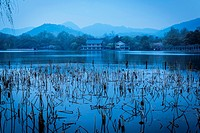 West Lake with reeds and houses in the background, Hangzhou, Zhejiang province, China.