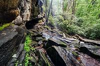 Slick Rock Falls - Pisgah National Forest - near Brevard, North Carolina, USA.