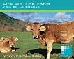 Vida en la granja (CD151)