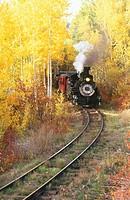 Railroad steam train winding through fall aspens near Chama. Cumbres & Toltec Scenic Railroad. New Mexico. USA