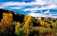 Sierra de Cameros. La Rioja. Spain