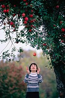 Japanese Woman and Apple Tree