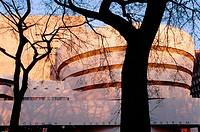Guggenheim Museum. New York City, USA
