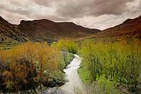 Río Cidacos, valle del Cidacos
