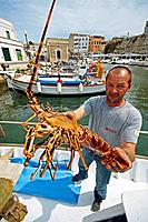 Fisherman showing lobster, port of Ciutadella. Minorca, Balearic Islands, Spain