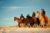 Wranglers out for a ride in the snow, Shell, Wyoming, USA