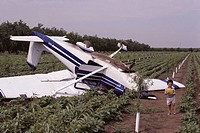 Cessna 172 Light airplane accident.