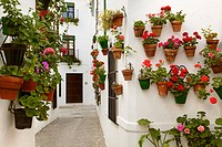 Flowerpots in Barrio de la Villa (old quarter), Priego de Cordoba, Cordoba province, Andalusia, Spain