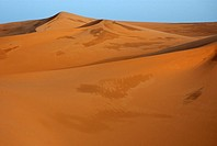the Erg Chebbi Dunes,Merzouga  Tafilalet  Morocco Africa