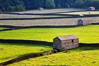 Field Barns Gunnerside Swaledale Yorkshire Dales England
