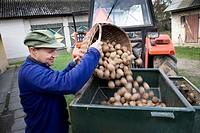 Farmer with potatoes ready for seeding.  Gmina Przylek, Zwolen county, Poland.