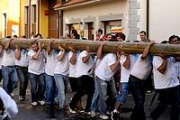 Fiesta de la Blanca Village men shoulder the bonfire to plant in the town plaza Nueva de Llanes Asturias