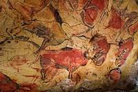 Bisons in Altamira´s reproduction cave Neo Cave  Upper Paleolithic cave paintings  Altamira museum  UNESCO World Heritage Santillana del Mar  Spain