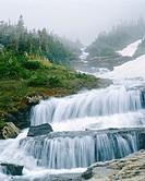 Lunch Creek Falls Glacier National