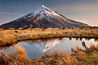 Mt Egmont / Taranaki, late afternoon reflection in small tarn set among tussock slopes of Pouakai range, Taranaki.