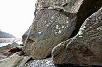 Makah Petroglyphs near Wedding Rocks, Ozette Loop - Olympic National Park, Washington