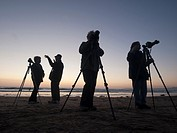 Photographers at twilight, Morro Bay, California, United States America