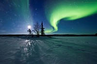 Aurora Borealis Northern Polar Lights and waxing moon over the boreal forest outside Yellowknife, Northwest Territories, Canada, MORE INFO The term au...