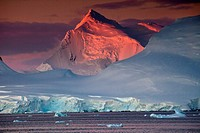 Alpenglow lights up high peaks on Wiencke and Anvers Islands behind Port Lockroy, Antarctic Peninsula.