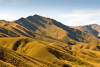 The hills surrounding Lindis Pass in the afternoon light New Zealands MacKenzie Country
