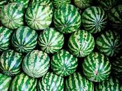 Watermelons, Sao Joaquim Market, Salvador, Bahia, Brazil