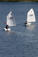 optimist sailing dinghies