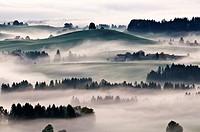 Autumn mist clears from rolling hills of Allgaeu region as near village of Eisenberg, Bavaria, Germany
