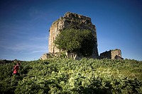 A tourist walks among the ruins of the Fortress of Matrera, called Pajarete Hill, in Villamartin village, Cadiz Province, Spain, April 13, 2011  The f...