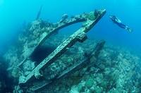 Scuba diver explores rudder post of ship wreck Pollockshields, Bermuda Island, Atlantic