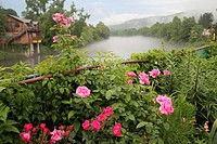 Flowers on the Bridge of Flowers, mist rising from the river in the background  Shelburne Falls/Buckland, Massachusetts, United States