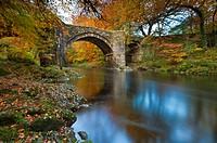 Holne Bridge over the River Dart, Dartmoor National Park, Devon, Southwest England, Europe