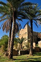 historic adobe city Al Hamra, Dakhliyah Region, Sultanate of Oman, Arabia, Middle East