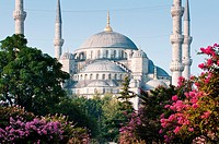 The iconic Blue Mosque, Istanbul, Turkey
