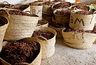 Dried Moscatel grapes in baskets, Lliber, Alicante, Spain