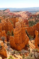 USA, Utah, striking hoodoo land forms at Fairyland view at Bryce Canyon National Park