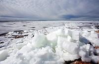 Melting ice blocks at seashore  Location Oulunsalo Riutunkari Finland Scandinavia Europe