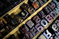 Letterpress types, made of wood, placed in a tray in the vintage print shop in Cali, Colombia