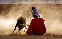 The Spanish bullfighter David Valiente Bullfight at tentadero, Jaen, Spain, 9 september 2009