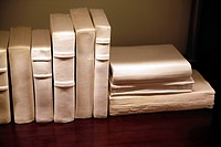White Ceramic Books, Realistically Placed on a Shelf.