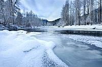 Ice and frost along the Birkenhead river near Pemberton, Coast Mountains British Columbia.