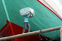 Man carrying goods on his back to load a cargo ship, Sunda Kelapa, Jakarta, Indonesia, Southeast Asia.