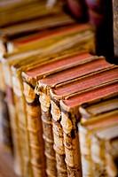 Historical Library Civil University of Salamanca (Salamanca, Castilla y Leon, Spain, Europe).