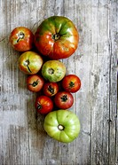 Image on different sizes of tomatoes.
