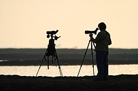 Birdwatcher looking through a telescope for shorebirds. Pak Thale. Thailand.