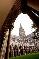 Salibury Cathedral cloisters Salisbury Wiltshire England.