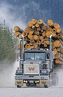 Loaded logging truck, Houston,BC,Canada.